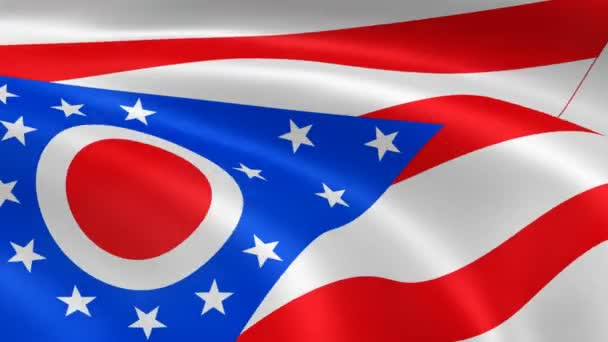 Ohioan flag in the wind