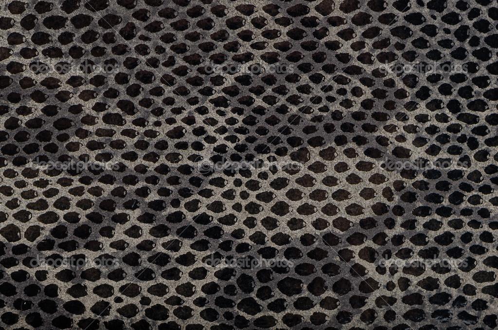 snakeskin7-m.jpg (1577×1000)   Animal print wallpaper, Animal prints  pattern, Snake skin