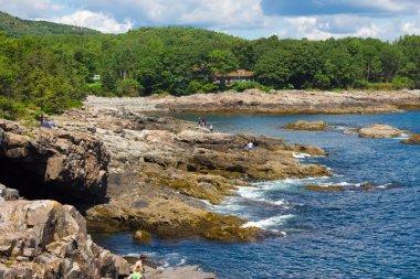 Arcadia National Park Maine