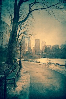 Winter Central Park