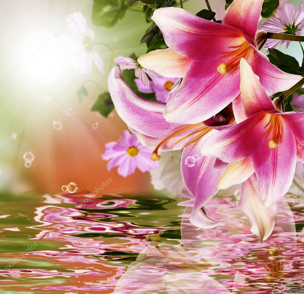 Exotic flora. Sunset tropical background