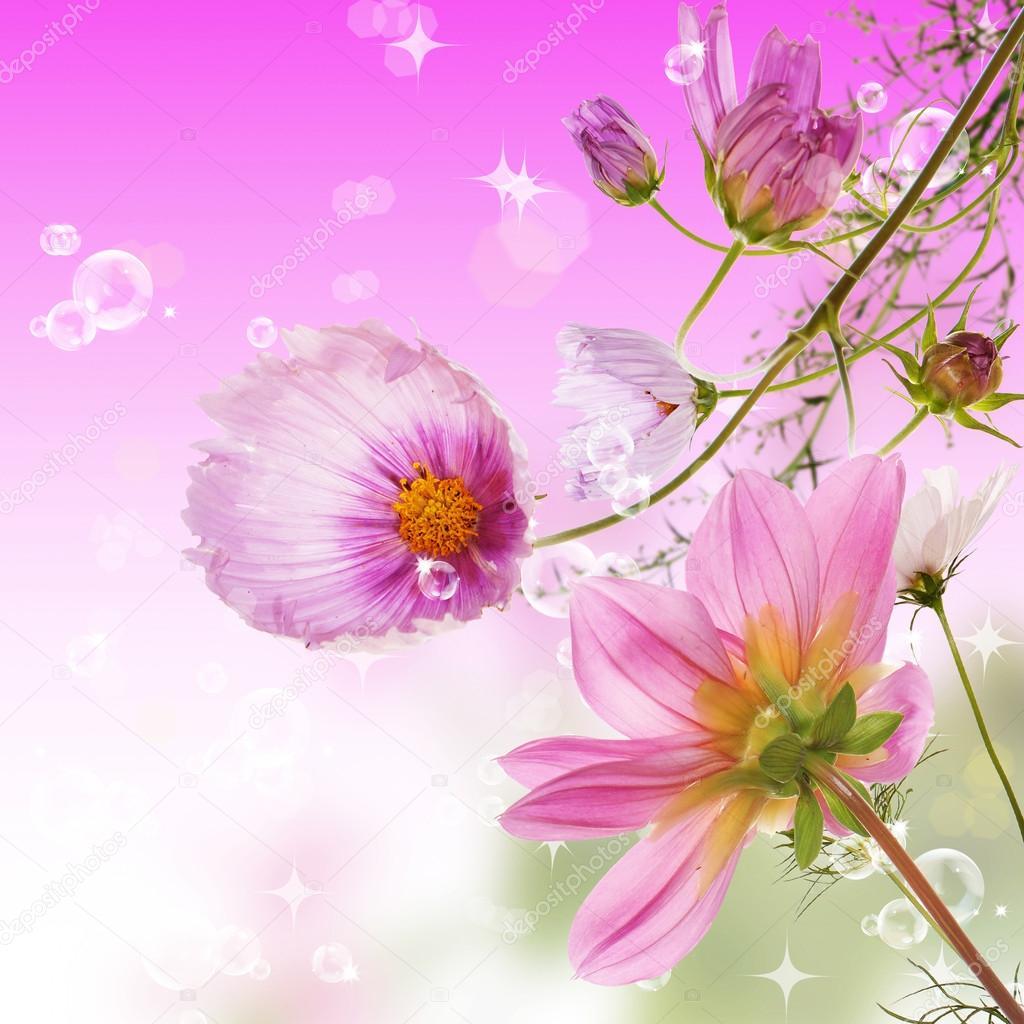 Beautiful flower card stock photo alex150770 28285431 beautiful flower card photo by alex150770 izmirmasajfo
