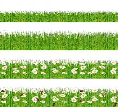 Green grass, ladybugs and daisies strips. Foregrounds vector collection.