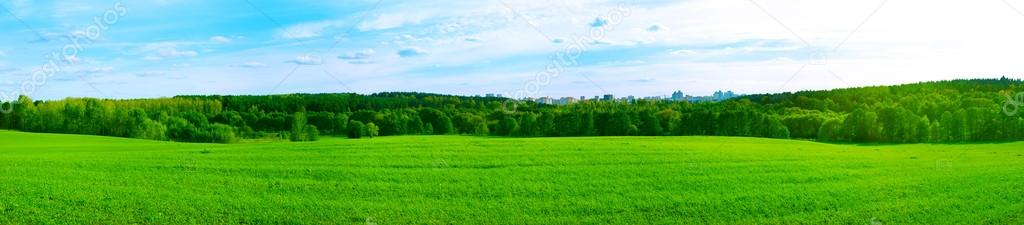 Summer Panorama with City in the Forest