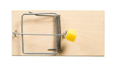 A mouse trap with cheese