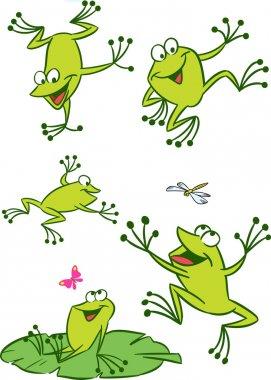 Few frogs