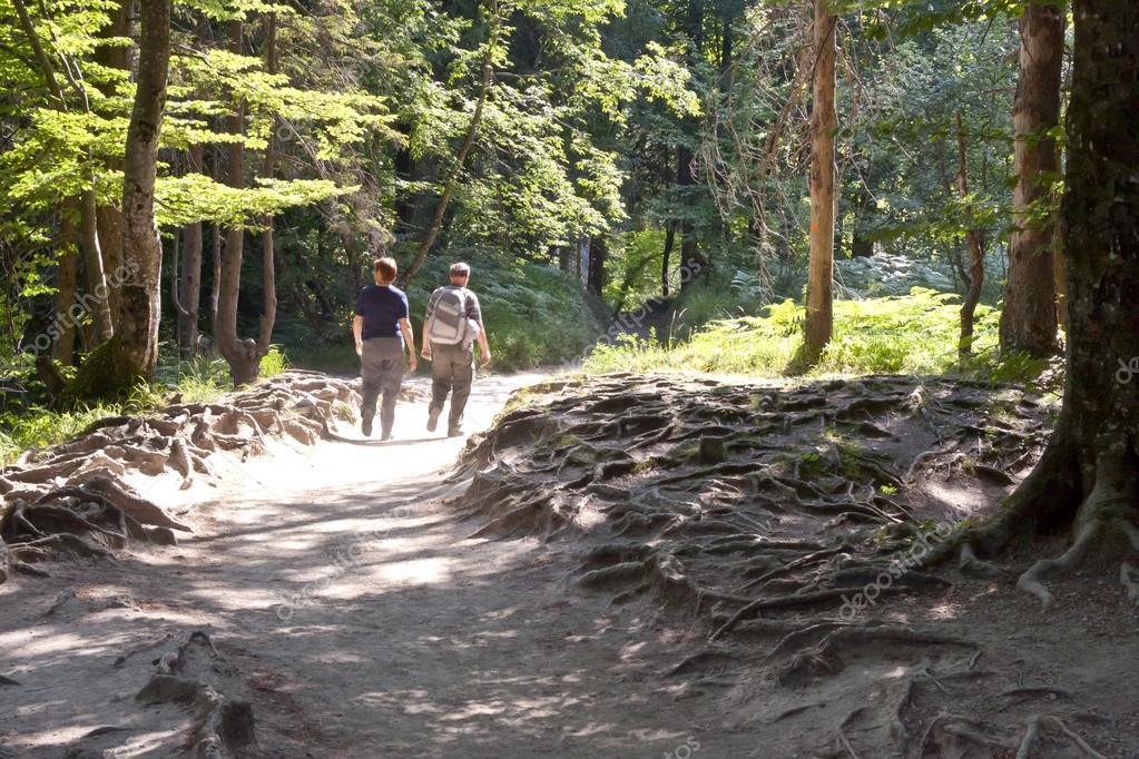 Two walking in Plitvice lakes