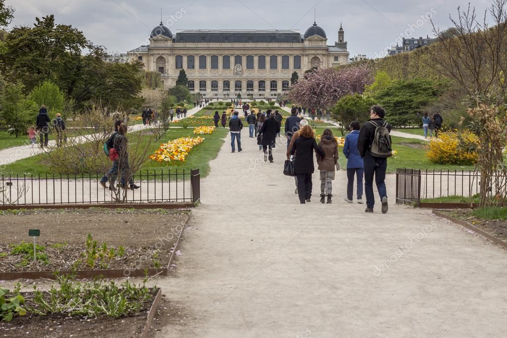 Jardin botanique avant le mus e d 39 histoire naturelle for Jardin botanique paris
