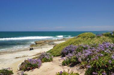 Seaside in La Jolla
