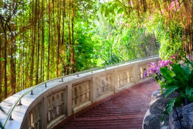 Peaceful scene of vintage stair in a garden