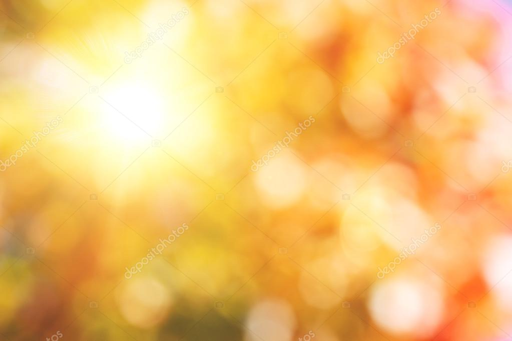 Autumnal natural background with sun