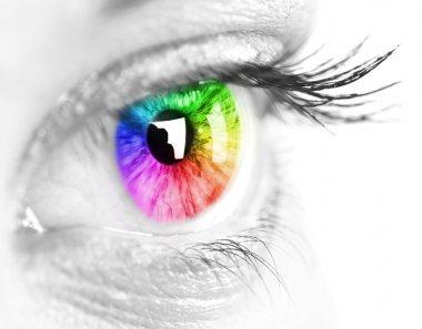 Colorful eye stock vector