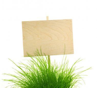 Empty Wooden Sign with Fresh Green Grass - isolated on white