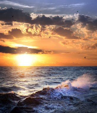 Stormy sea with sundown and birds , beautiful weather