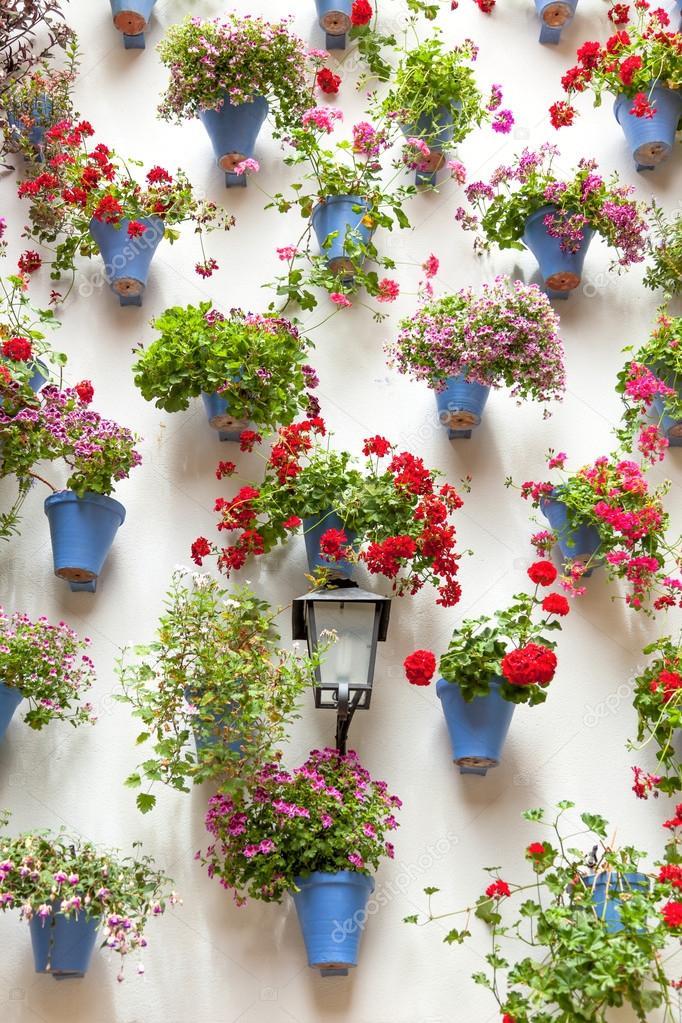 Muitas vezes vasos de plantas e flores vermelhas em uma parede branca com  MG69
