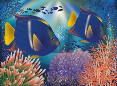 Underwater world wallpaper with tropical fish,  vector illustration
