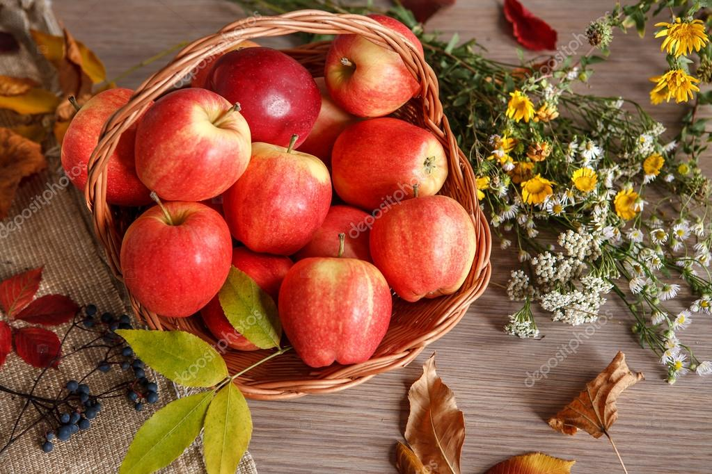 Still life with basket of ripe apples