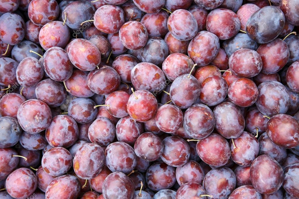 Plum fruits