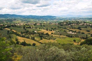 Panoramic view of Montefalco. Umbria. Italy.