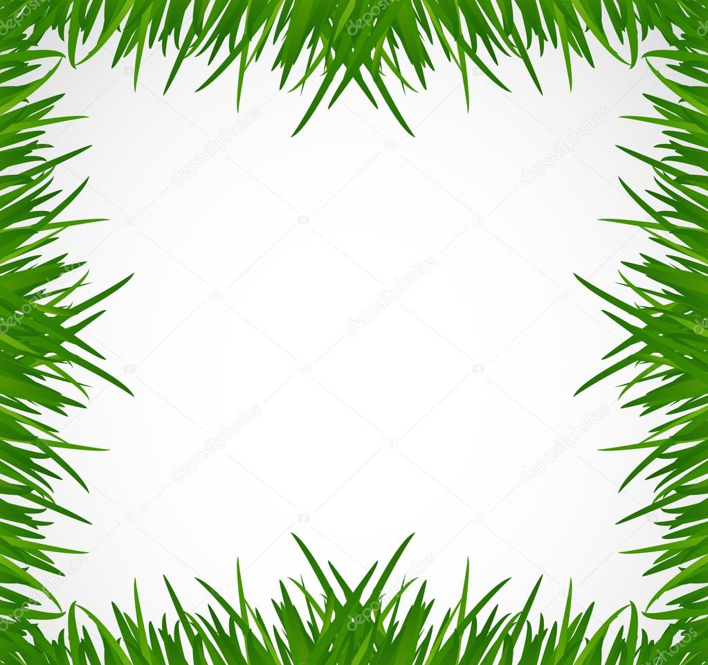 green grass border illustration design stock photo