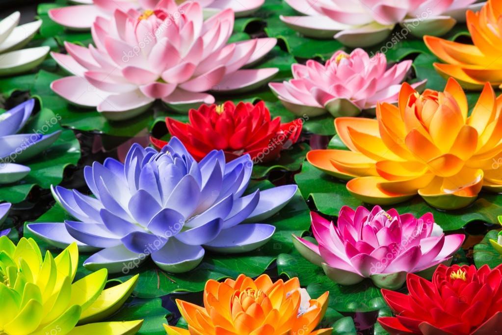 Flores De Loto Falso Fotos De Stock Piccaya 27318153