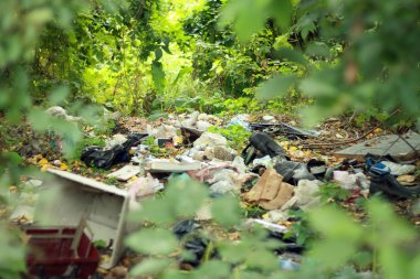 Garbage dump in the forest