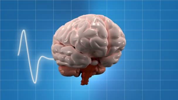Human brain health backgrounds