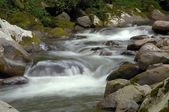 Little Pigeon River at Great Smoky Mountains National Park
