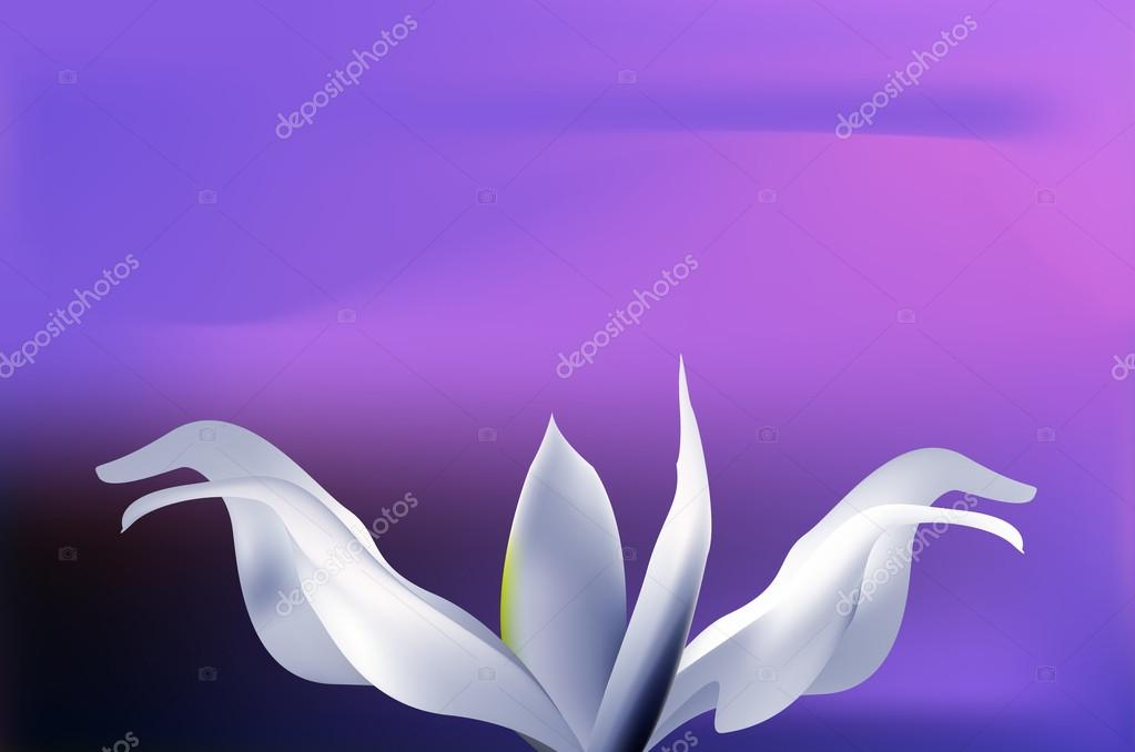 Mystical pale blue flower on sunset sky