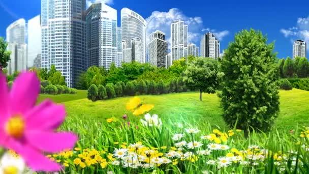 zöld mezők és a virágok