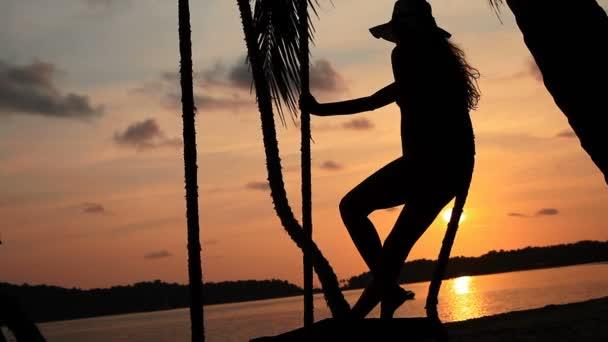 dívka na pláži a večer západ slunce