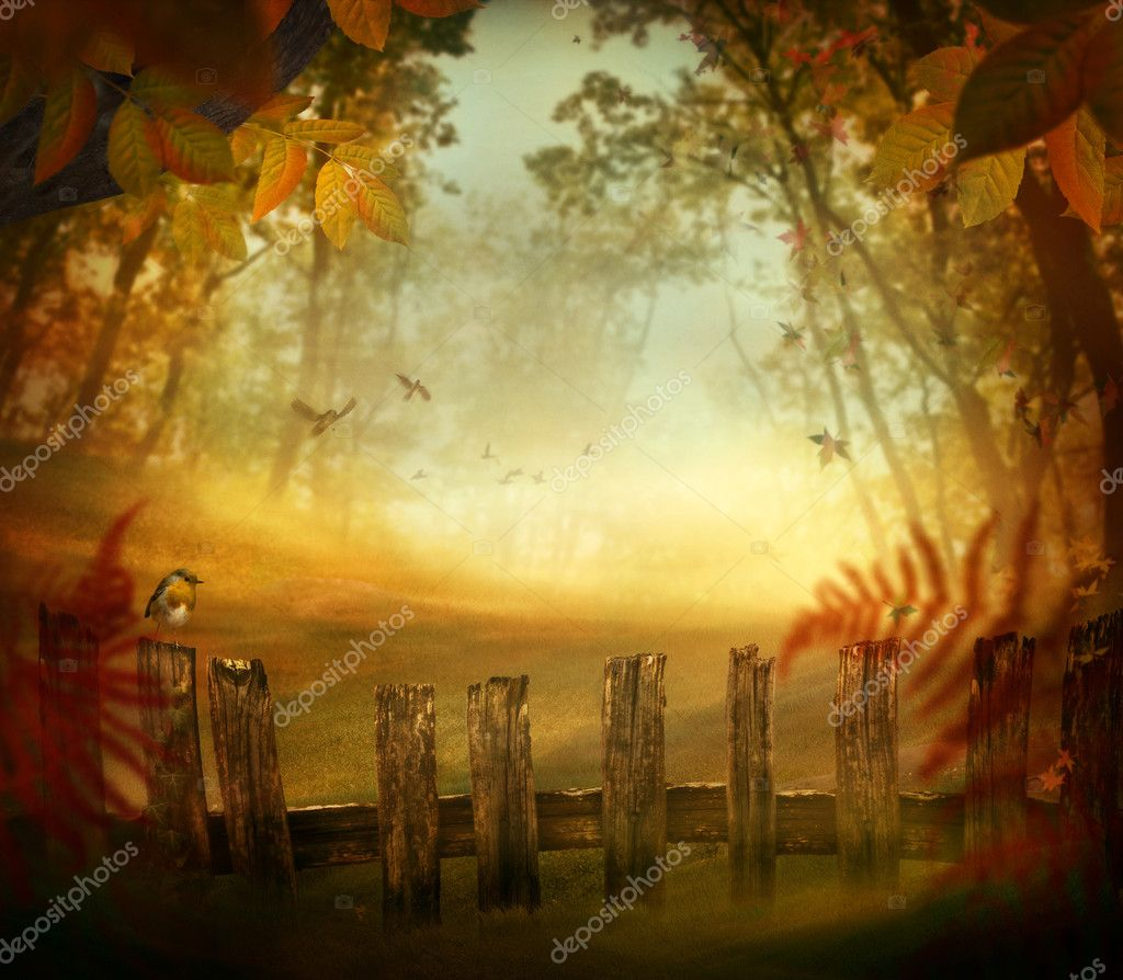 Фотообои Autumn design - Forest with wood fence