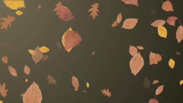 padající listí pozadí