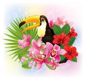 fiori tropicali e un Tucano