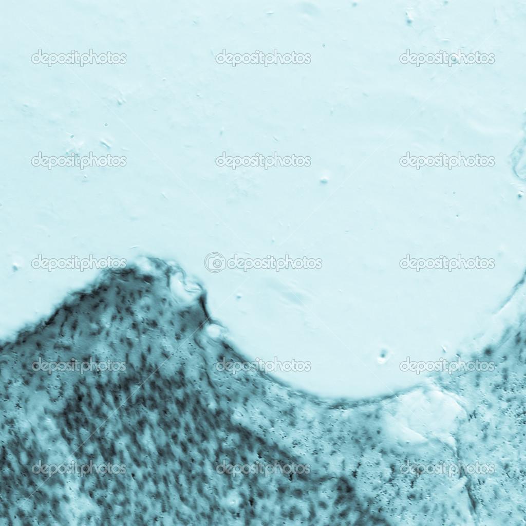 neuronas del hipocampo del cerebro de rata microscopia — Fotos de ...