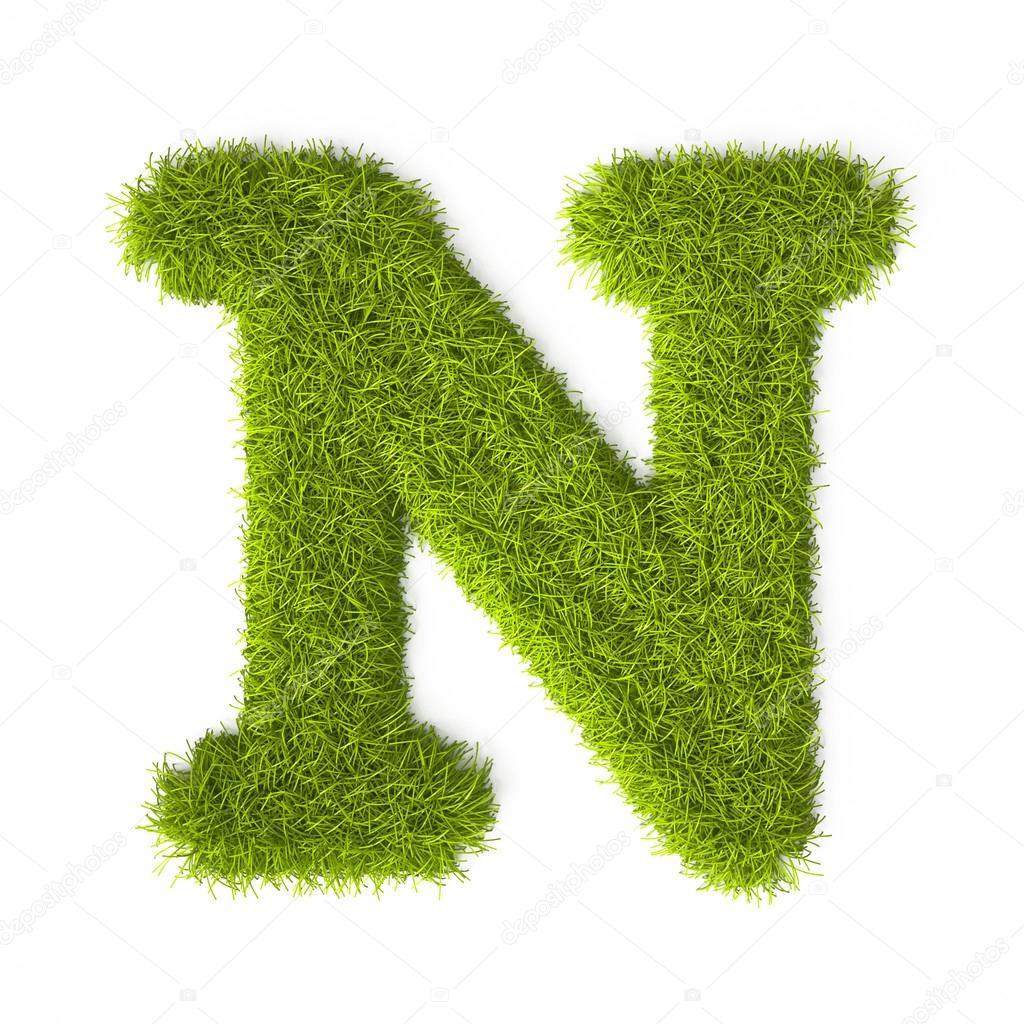 Grass Style Latin Alphabet Letter N Stock Photo C Vahekatrjyan