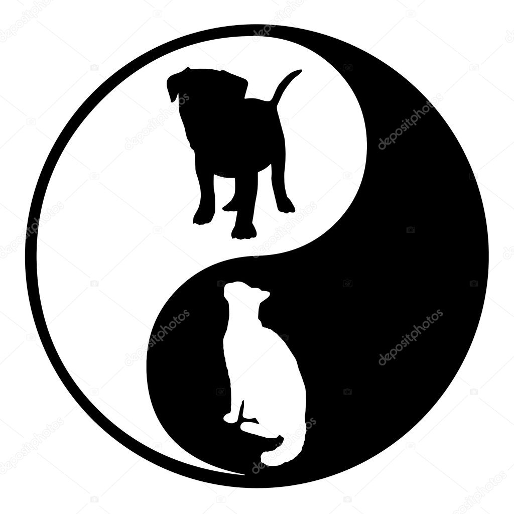 yin yang dog cat stock photo darrenw 22009927 rh depositphotos com Anime Yin and Yang Funny Yin Yang