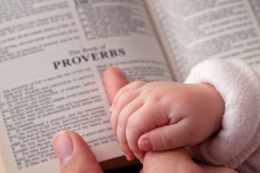 Baby holding father finger as he points to Proverbs verse stock vector