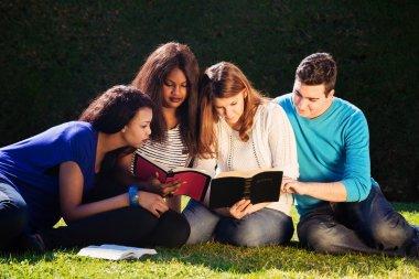 Group Bible Study
