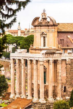 the Temple of Antoninus and Faustina in the Roman Forum in Rome,