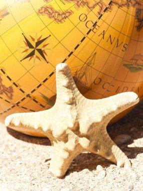 Starfish and the globe