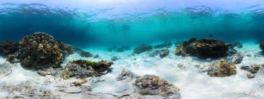 Panorama of a tropical reef with rocks