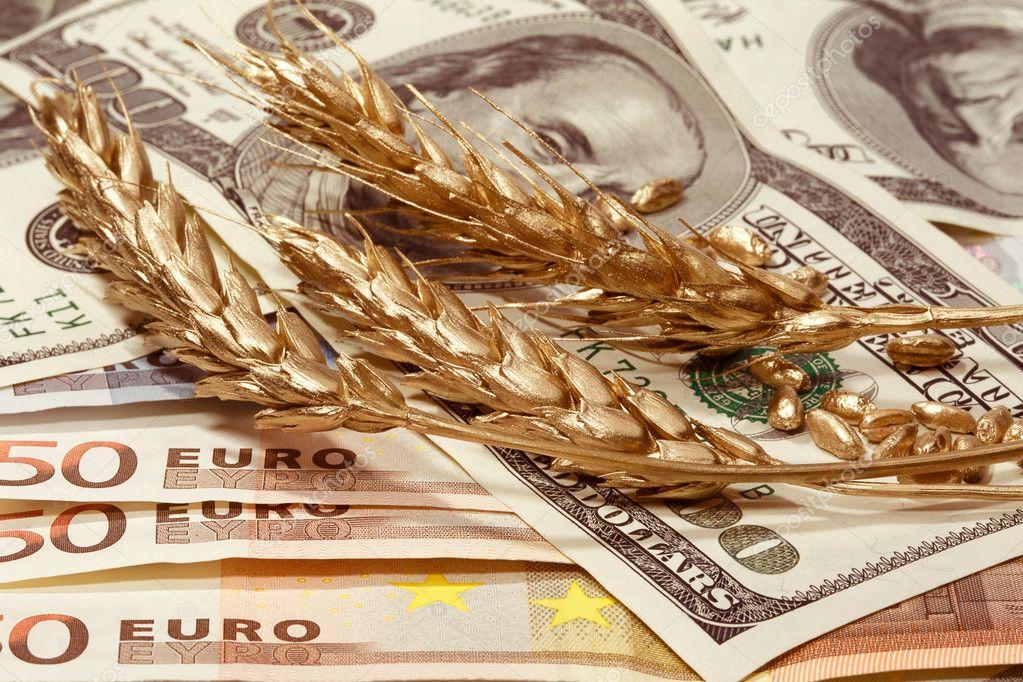 Україна аграрна: що відбувається з ринком зернових та олійних?
