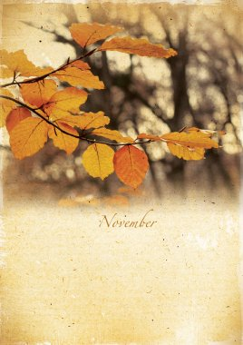 Calendar retro. November. Vintage autumn landscape.