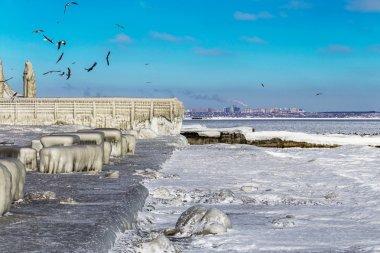 Encrusted Black Sea city embankment and gulls