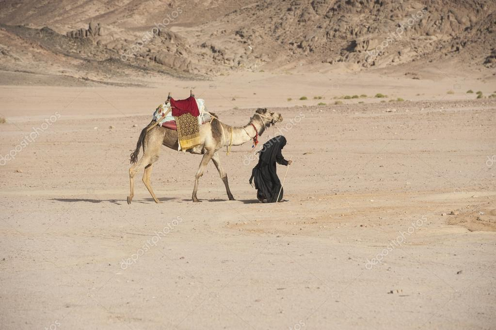 Mutabor Depositphotos_44012169-stock-photo-old-bedouin-woman-with-camel