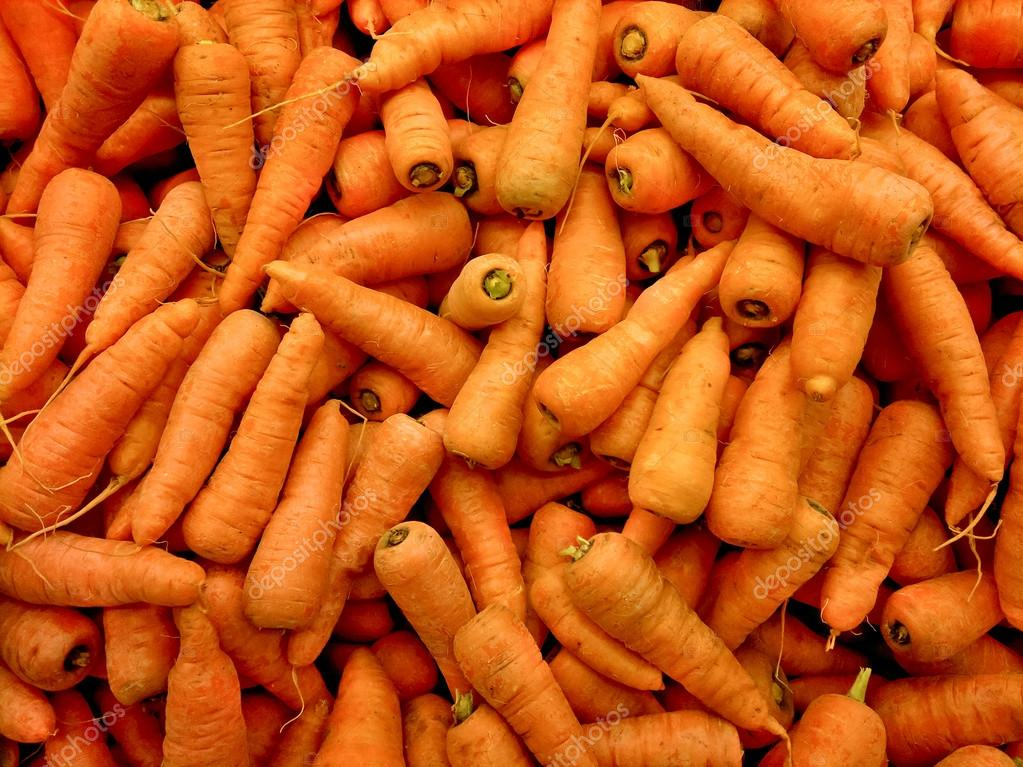 Ripe carrots background