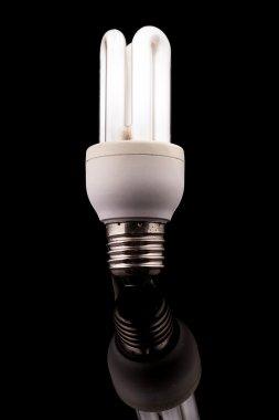 Light bulb on black background, energy saver