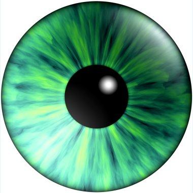 Texture green eyes
