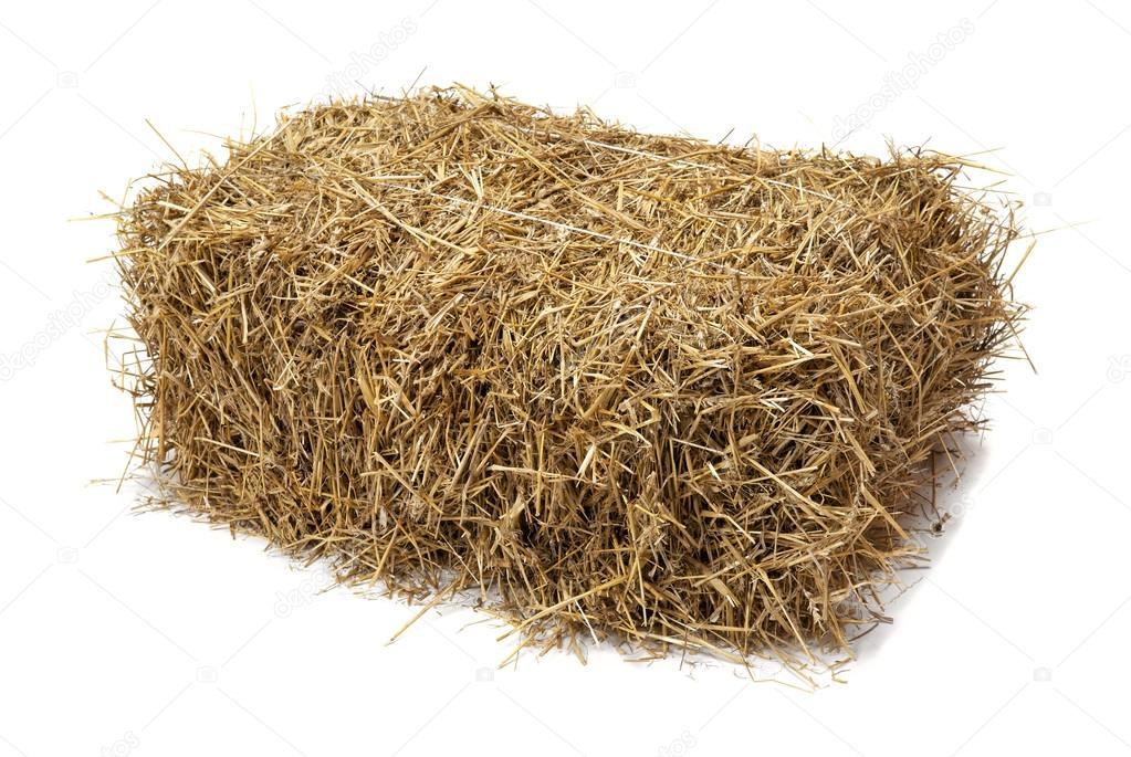 Hay on white background